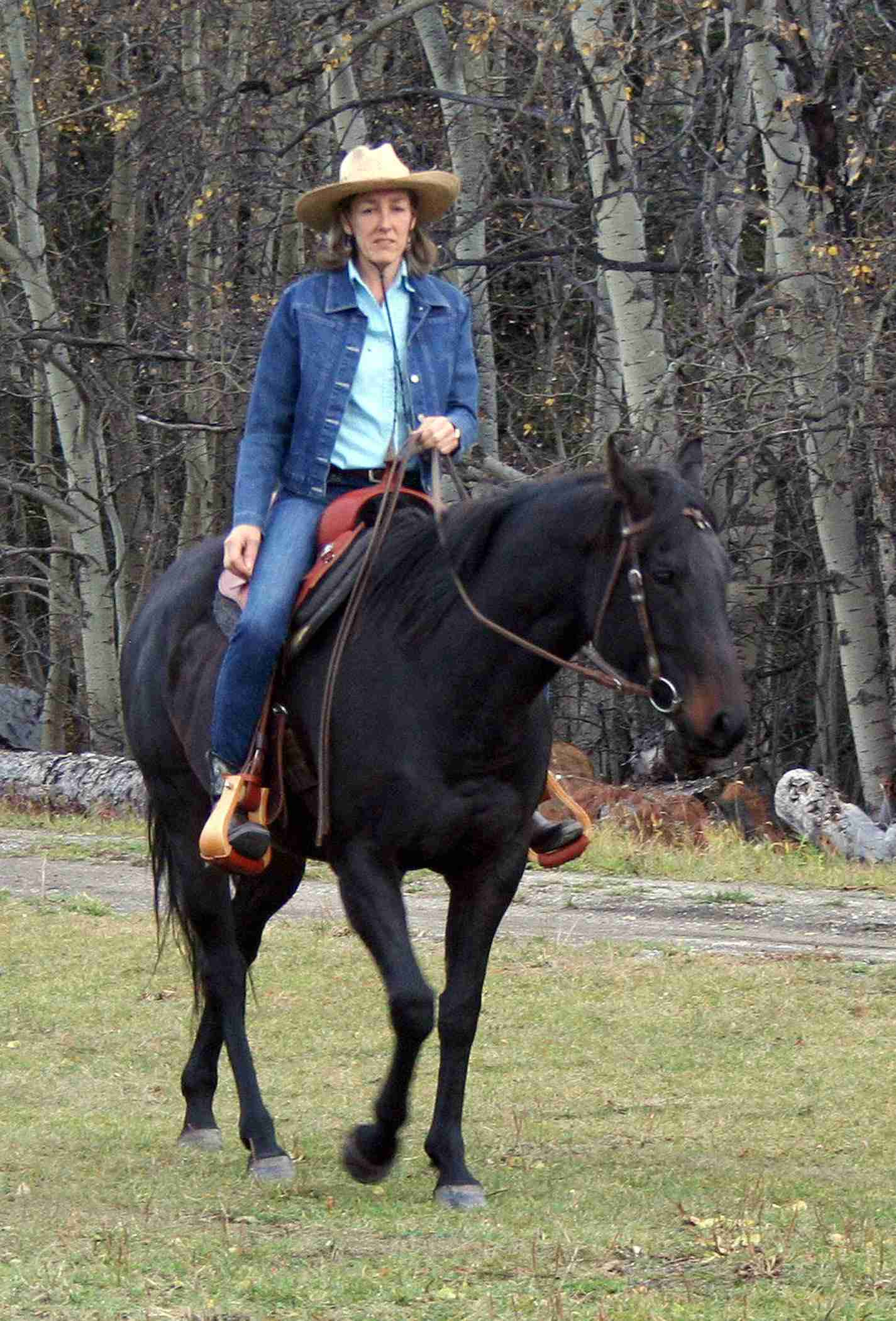 CAN A WESTERN SADDLE BE COMFORTABLE FOR WOMEN?