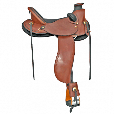CLady Wade Saddle