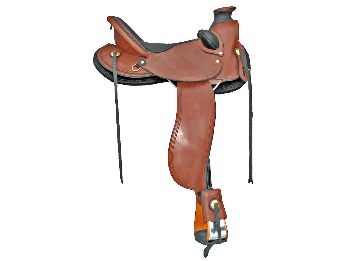 CLady Wade Saddle